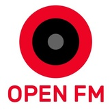 Open.FM - 500 Electronic Hits